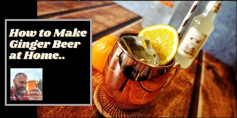 A ginger beer on a table with lemon in it and the words how to make a ginger beer at home wirtten next to the beer..